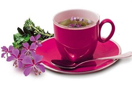 иван-чай при простатите