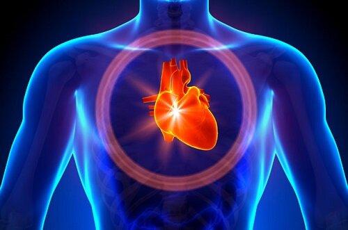 Бисопролол и сердце