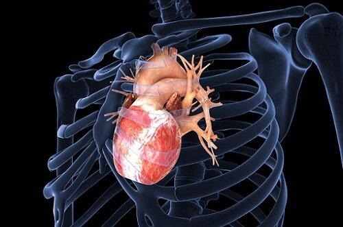 действие на сердце препаратов