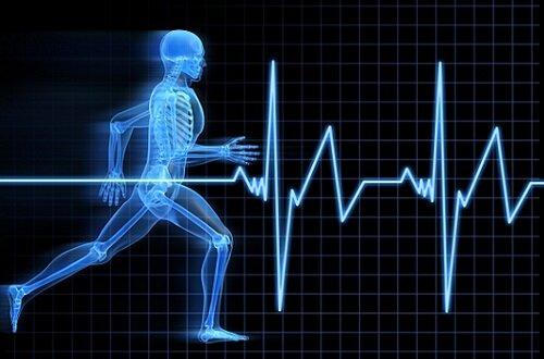 физкультура и эрекция
