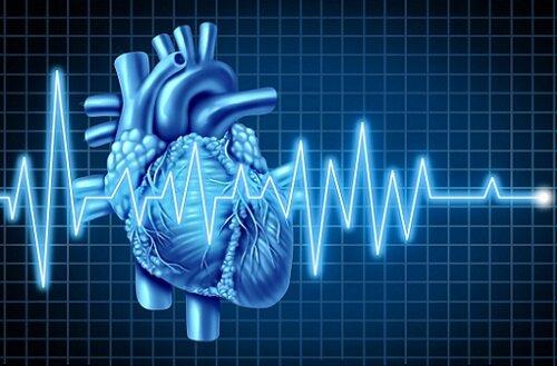 сердце и мельдоний